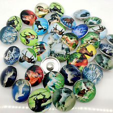15pcs 18mm Snap Button Glass Ginger Snap Horse Chunk Button Mixed Wholesale Lots