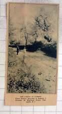 1927 Prize-winning Photo By Edward Greenan Highland Street Pawtucket