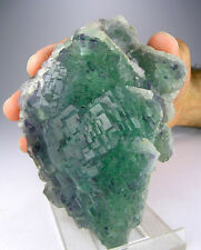 2 POUND PRISTINE STEPPED CUBIC PHANTOM FLUORITE CRYSTALS GROUP, PIAOTANG, CHINA