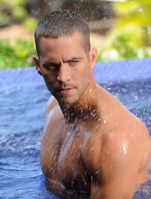 Paul Walker UNSIGNED photo - B970 - SEXY!!!!