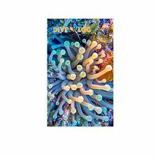 Anemone Scuba Dive Log Book - Diving Journal