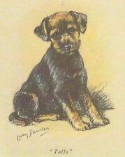 Welsh Terrier Puppy - Matted Dog Print - Lucy Dawson
