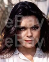 Allo Allo (TV) Francesca Gonshaw 10x8 Photo