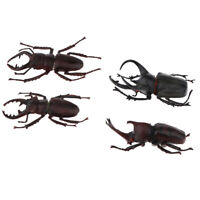 Bugs Insects Figurines Model for Kids Animal Biology Science Teaching Aids