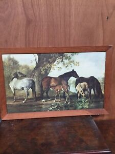 Vintage Framed Print Mares & Foals Horses George Stubbs  16/6/N