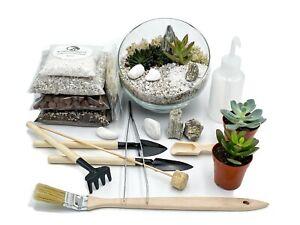 Open DIY Terrarium Kit 'Sinaloa' Cacti or Succulent Gift Plant Gift Terrarium