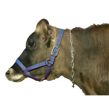 """Intrepid International Stainless Steel Cow Neck Chain 40"""" Length Zinc Coated"""