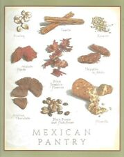 Cooks Illustrated  BACK COVER ONLY  Framable  Art  John Burgoyne  MEXICAN PANTRY
