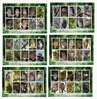 2010  OWLS  BIRDS 6 SOUVENIR SHEETS MNH UNPERFORATED OWL 2X5