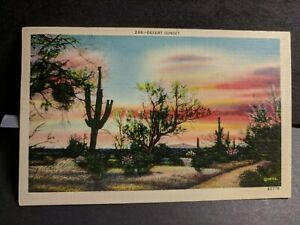 CACTUS in DESERT, SAFFORD, ARIZONA 1939 Postal History Cover Postcard AZ