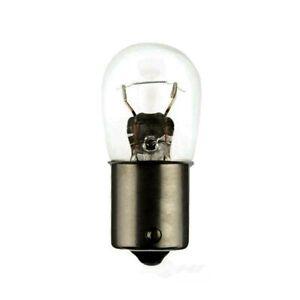 Trunk Light Bulb Hella 1003