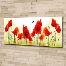 Glas-Bild Wandbilder Druck auf Glas 125x50 Deko Blumen & Pflanzen Mohnblumen
