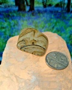 1 X Kalahari Desert Stone Tumble Stone HEALING SPIRITUAL MYSTICAL Gemstones (M)