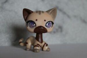 Littlest Pet Shop Glass/Resin-Eye Custom Short Hair Cat OOAK