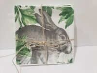 Artistic Accents Easter Bunny Rabbit Cabbage Appetizer Plates Set of 4