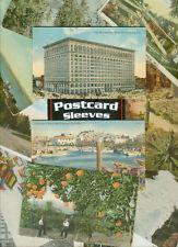 Archival Standard Size Postcard Sleeves  Acid Free 200