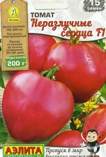 """Tomato """"Inseparable hearts F1""""  Russian High Quality seeds.not GMO"""