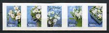 Sweden 2017 MNH Winter Flowers 5v S/A Strip Flower Nature Plants Stamps