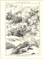 1890 Almohada de rodillo de japonés Sir Frederick Haines Ibex disparo Baltistán