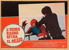 FOTOBUSTA 4, L'UOMO RAGNO SFIDA IL DRAGO, HAMMOND, F.SIMON, McDOUGALL, AZIONE