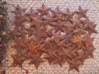 Huge Lot 300 Rusty Barn Stars 1.5 inch Primitive Rustic Country Rusted Tin Metal