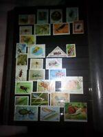 Insekten Lot Briefmarken Sellos Stamps Timbres