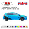 Ford Focus Fiesta ST RS Tiger Stripes Graphics Vinyl Stickers Decals