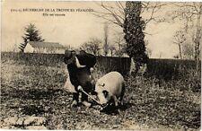 CPA Recherche de la Truffe en Périgord-Elle est trouvée (233910)