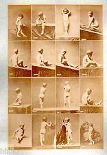 C16 Calavas photo étude pour peintre vintage albumen print albuminé nus Homme