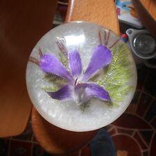 lucite? paperweight encasing flower