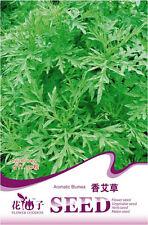 1 Pack 50 Aromatic Blumea Seeds Wormwood Blumea balsamifera D042