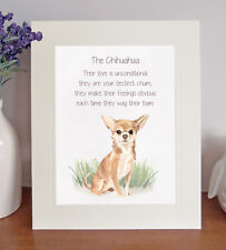 Chihuahua BESTEST CHUM Novelty Dog Poem 8 x 10 Picture/10x8 Print Fun Gift