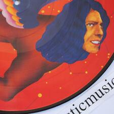 DAVID BOWIE MAN WHO THE WORLD PICTURE DISC VINYL LP POP ART WARHOL PEELAERT MINT