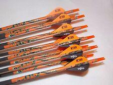 1 dozen Gold Tip Pro Hunter 300 carbon custom arrows w/blazers!