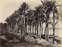 Egitto Foto Albumina Stampa Verso 1890 IN Piccolo Formato 10x13cm