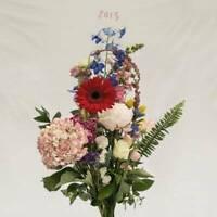 Meilyr Jones 2013 LP VINYL Moshi Moshi Records 2016 NEW