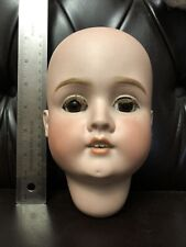 "Antique German Bisque Doll Head - S H - 13 "" Circum - No Damage- NICE"