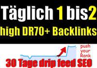 30 Tage manueller Linkaufbau täglich 1 bis 2 High DR 70+ Backlinks mit Content