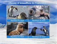 Chad 2018 MNH Antarctic Birds Mammals 4v M/S Penguins Seals Animals Stamps