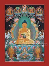 "34"" x 24.5"" Shakyamuni Buddha Tibetan Buddhist Thangka/Thanka Scroll Painting"
