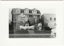 1955 Ohio State University vs. Northwestern Football Tweety Bird Sylvester Photo
