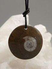 Anhänger GONIATIT Fossilie  Schnecke  Ammonit gebohrt a4