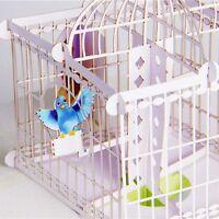 Handmade Pop Up Bird Cage Greeting Happy Birthday Invitations Card 3D EA7Z