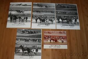 Vintage 1981 Harness Horse Racing Freehold Speedway Winners 8x10 11x14 Photo Lot