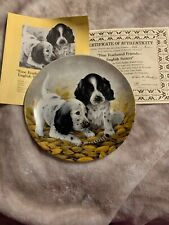 The English Setters Fine Feathered Friend Puppies Plate