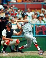 "Carl Yastrzemski Boston Red Sox Action Photo (Size: 8"" x 10"")"