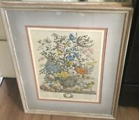 Vintage Robert Furber MAY Framed Matted Botanical Print H Fletcher Engraver