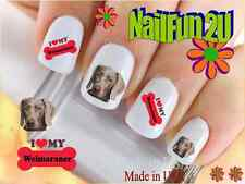 "Nail Art #156 Dog Breed ""Love Weimaraner Bone"" WaterSlide Nail Decals Transfers"