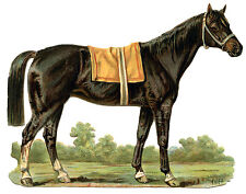 280 vintage Victorian Horse images & Pictures CD Rom