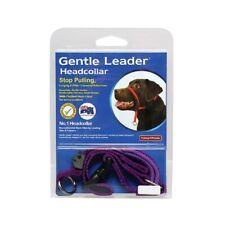 Dog Training Head Collar Gentle Leader Genuine Free Video Small Medium 4 colours